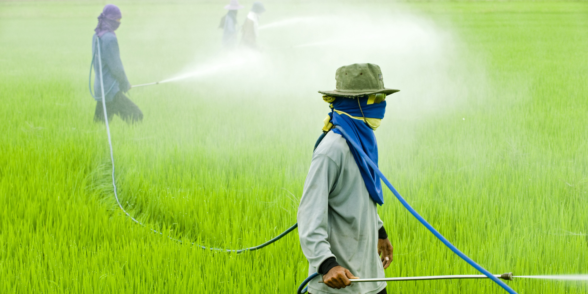 Pesticides Formulations